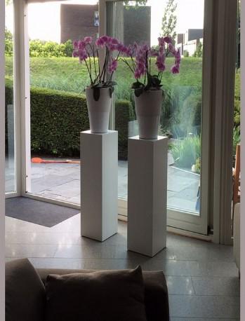 Designzuilen Zuilen En Sokkels Op Maat Voor Decoratie En Presentatie